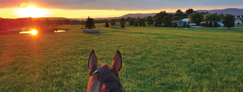 View-of-cross-country-course-at-sunset-at-Town-Hill-Farm,-Lakeville,-CT