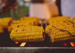 Max's Farm Festival Maize Tapas & Corn