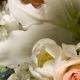 37th Annual Fine Art Flowers