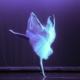 Ballet Spooktacular KATE