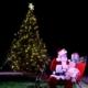 Annual Tree Lighting Ceremony
